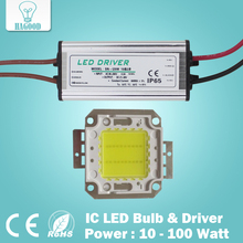 Real Full Watt 10W 20W 30W 50W 100w High Power COB LED lamp Chips Bulb with LED Driver For DIY Floodlight Spot light Lawn