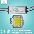 Real Watt Completo 10 W 20 W 30 W 50 W 100 w COB LED De Alta Potência Fichas lâmpada Lâmpada com LED Driver Para DIY Projector Spot light Lawn