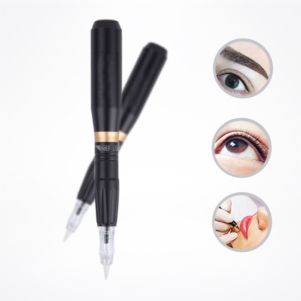 Kit de tatouage professionnel de lèvre de sourcil de Machine de maquillage permanente de Biomaser HP100 avec 3 pistolet de tatouage de Microblade de cartouche de Biomaser 3D