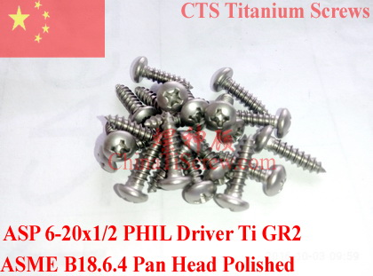 Titanium screws 6-20x1/2 Pan Head Phillips Driver Self Tapping 50 pcs Ti GR2