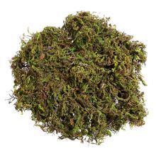 WINOMO 3แพ็คประดิษฐ์Grass Mossปลอมตกแต่งจำลองพืชสีเขียวFaux Grass Moss Lichen Garden Home Decor Patio A20