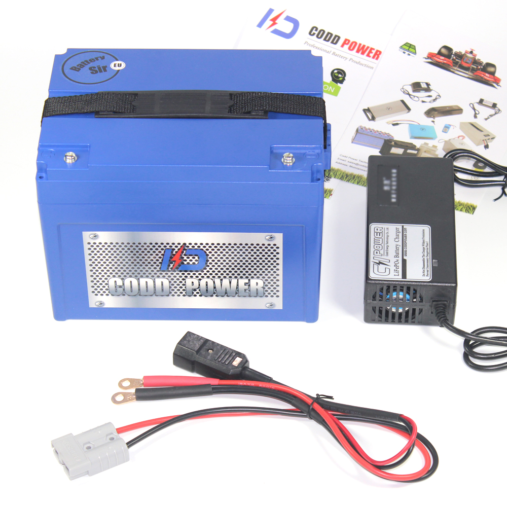 24V 60AH ebike lithium ion battery pack For electric bike 24V EV CAR Solar battery