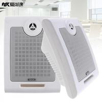10W 2pcs Fashion Wall Mounted Ceiling Speaker Public Broadcast Speaker For Park School Shopping Mall Railway