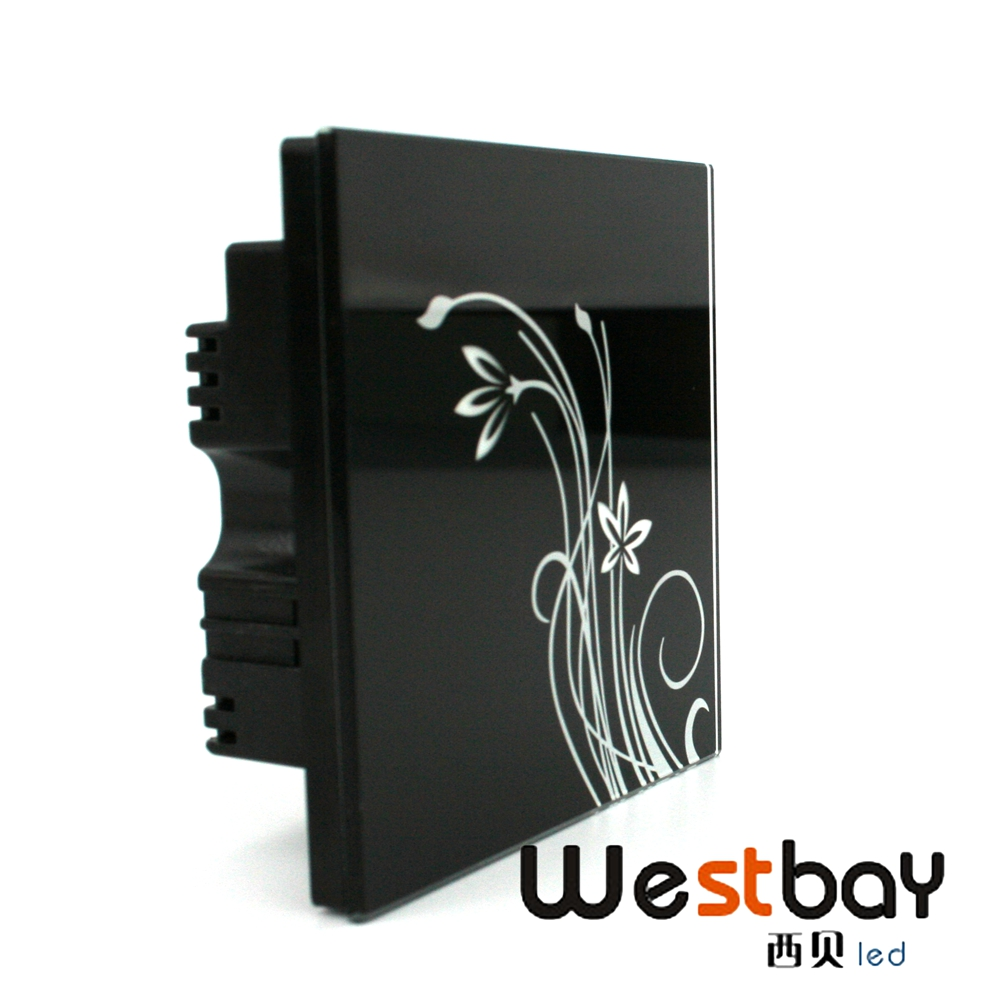 ac100 250v touching panel wall switch black color 2 gang 2