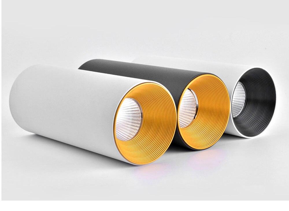 LED Ceiling light 8*15cm Mounting Surface ceiling lamp 10W Cylinder for Foyer/Balcony/Corridor/Bedroom/Restaurant