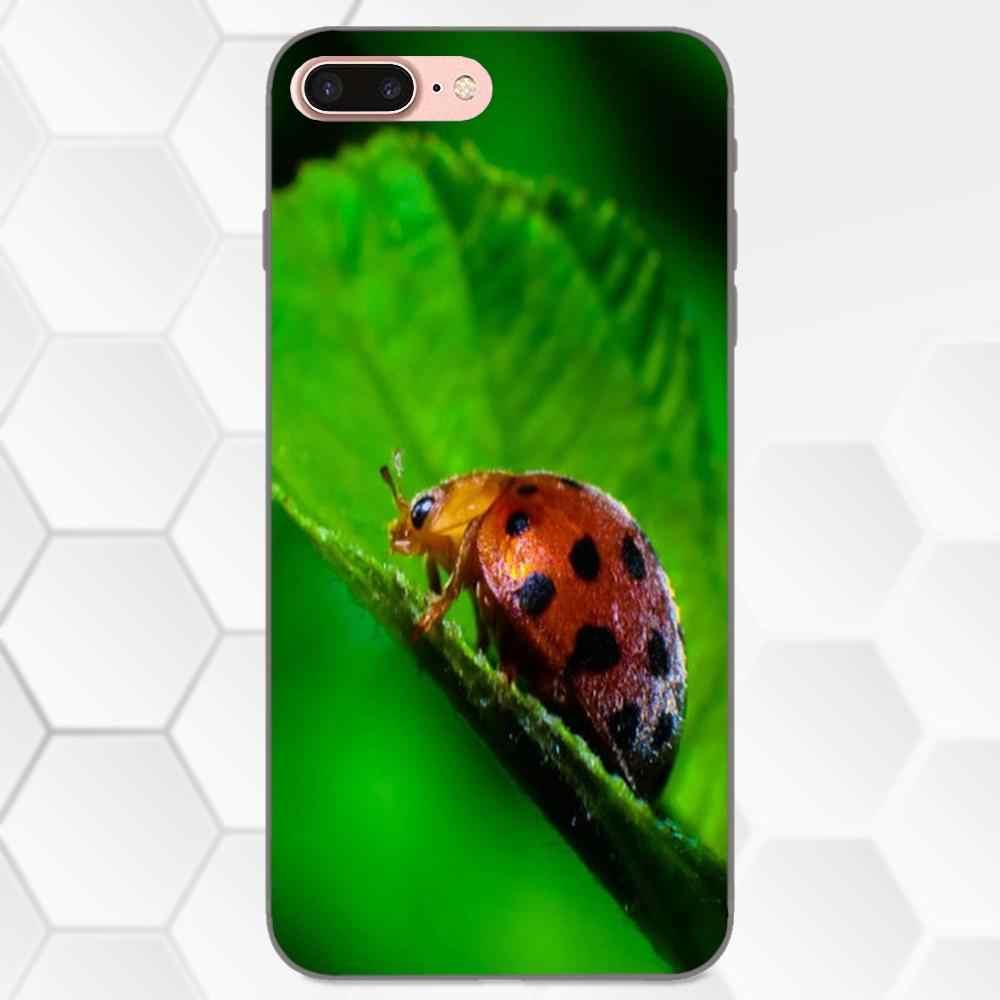 Weiche Mode-Fall Für Huawei Honor 5A 6A 6C 7A 7C 7X 8A 8C 8X9 10 P8 P9 p10 P20 P30 Mini Lite Plus Schöne Red Lady Bug