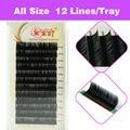 Eyelashes Volume Silk 3D Eyelash Extension 3D 10 Trays/Lot 12 Rows 0.1 Thickness 8-15mm Free Shipping