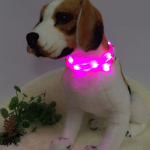 LED Pet Dog Collar USB Rechargeable Pet Dog Glowing Collar for Night Safety Light for Small Medium Large Dog Traction Belt(China)