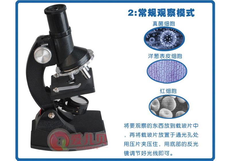 300x 600x 1200x LED light Illuminated Monocular Plastic Toy Childrens Student Educational Biological Microscope for Kids Birth