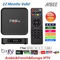 Quente melhor 1 Ano Europa Francês Árabe CAIXA DE IPTV Quad Core S905x ITÁLIA T95M Android 6.0 4 K TV Box T95M 1000 TV Ao Vivo Canal plus WIFI