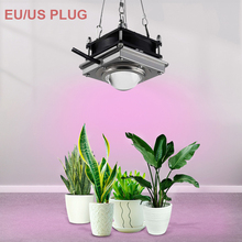 Fitolampy COB Lamp For Plants 150W 4000K LED Grow Light Phyto Lamp Full Spectrum Grow Tent Box Garden Light For Plants Flowers