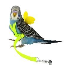 Popular Pet Flying Harness-Buy Cheap Pet Flying Harness lots