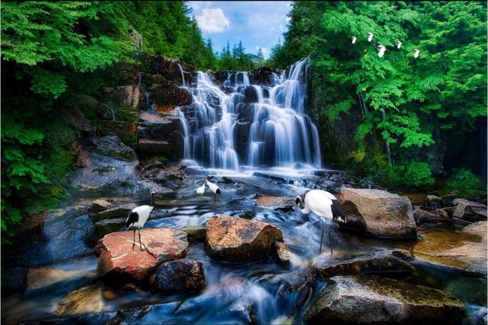 Custom Mural 3d Wallpaper Mountain Waterfall Water Crane