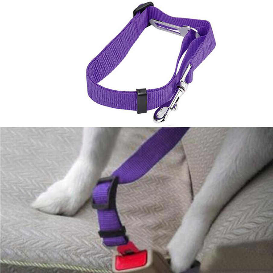 Kwalifikowany kot domowy pies fotelik samochodowy szelki paskowe pojazd pies pas smycz klip Cachorro Mascotas Cinturon De Seguridad
