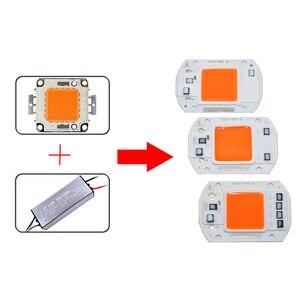 Image 3 - 100 pces ac110v 220 v cob led chip phyto lâmpada espectro completo 20 w 30 w 50 diodo led crescer luzes fitoampy para mudas interior