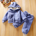 Bear Baby Boys Clothing Set Children Hoodies Pants Thicken Winter Warm Velvet Clothes Boys Girls Sets 2017 Spring New Arrival