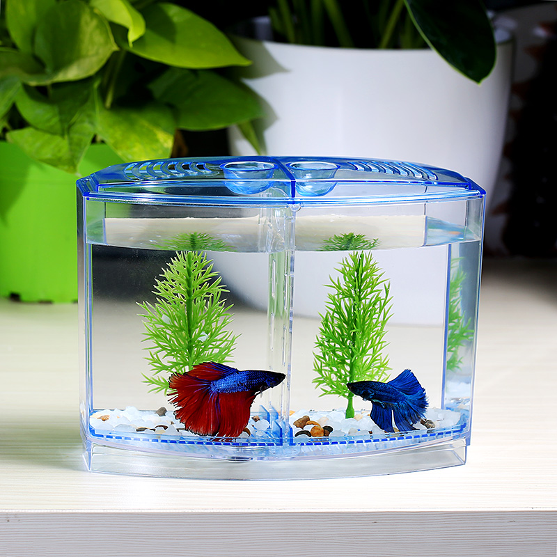 Betta Fish Mansion