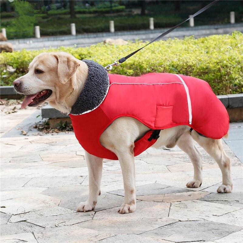 Dog Clothes (27)