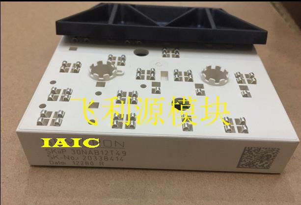 100%New and original,  90 days warranty     SKIIP30NAB12T49100%New and original,  90 days warranty     SKIIP30NAB12T49