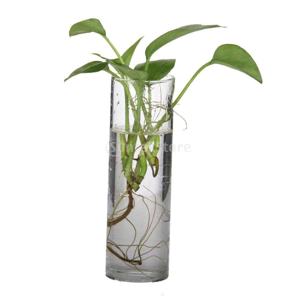suntek cilindro botella de vidrio florero colgante de pared para la planta de flor