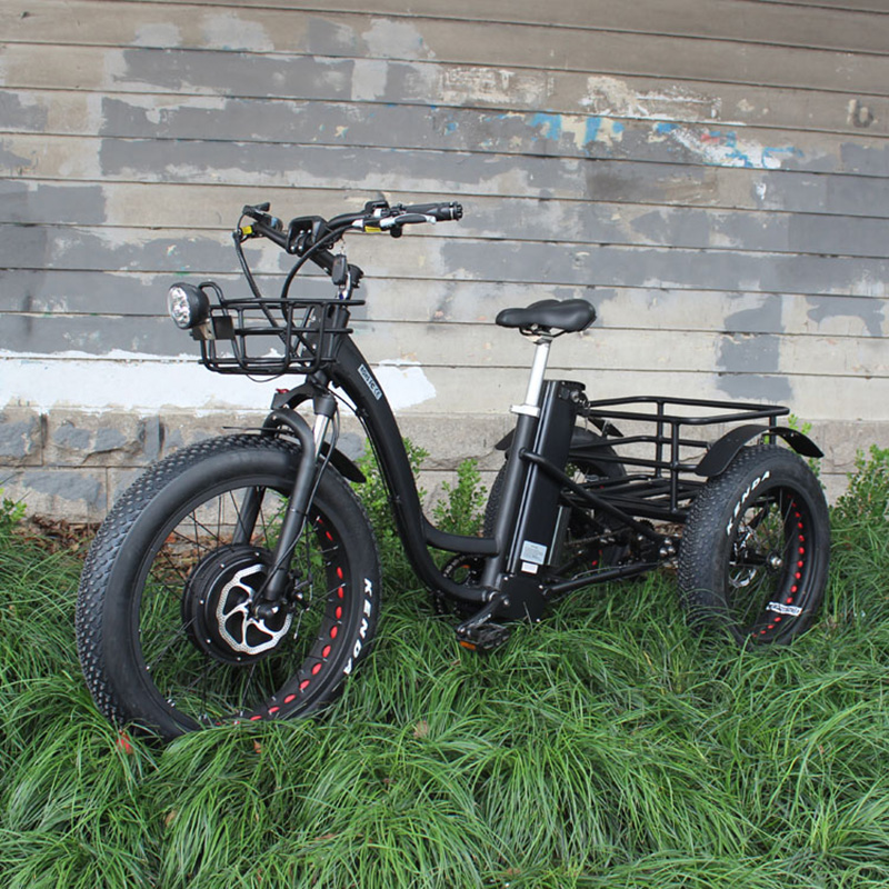 48V 1000W electric three-wheeled snowmobile Electric three-wheeled bicycle fat ebike 20-24inch wheel electric