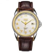New Brand Automatic Mechanical Leather Causual Watch Luminous Waterproof Watches Date Business Gold Wristwatch Man Clock
