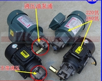 Gear Oil Pump Ac Motor 200w Insert Type Lubricating Cycloid Small Flow Low Pressure Gear Pump