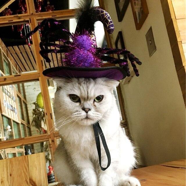 PETFORU Spider Pumpkin Hat Pet Dog Cat Cosplay Witcher Cap Costume for Halloween Festival Decoraction 1