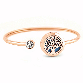 Free with Felt Pads! New Arrival Rose Gold 20mm Magnetic 316L Stainless Steel Aromatherapy Oil Diffuser Locket Bracelet