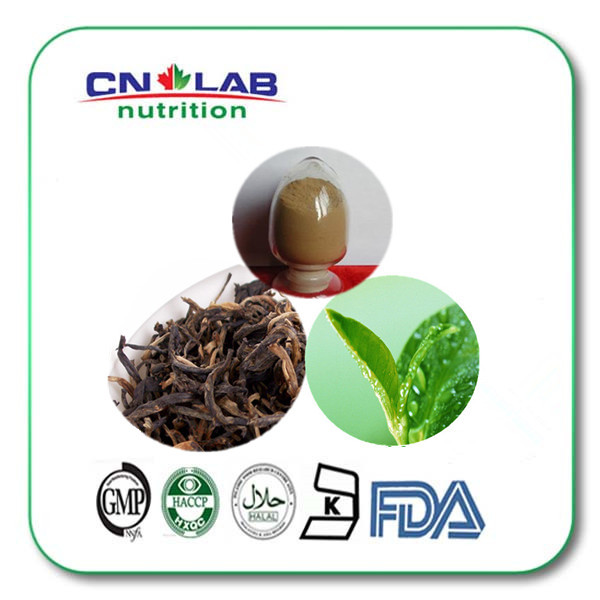 100% Natural Black Tea Extract, Powder,Black Tea Extract Polyphenols 20% 1kg/lot  free shipping