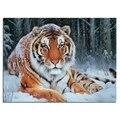 Алмазная вышивка снежного тигра 40x30  Алмазное квадратное сверло для рукоделия  приклеенное украшение для дома zx