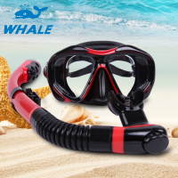 Whale Brand Design Large Frame Silicone Diving Anti fog Mask Goggles Waterproof Glasses With Snorkel Scuba Gear Equipment Set