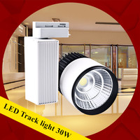 DHL 30W Track Light Rail Lamp COB Rail Lights Equal 300W Halogen Lamp LED Spotlight Track Lamp 110V 240v Track Lighting