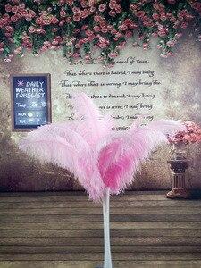 Image 2 - Mooie 100 stks Kwaliteit grote Pole natuurlijke witte struisvogelveren 50 55 cm/20 22 inch bruiloft carnaval stage performance apparel