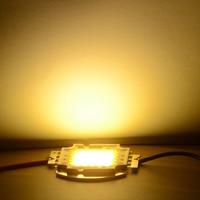 Super 100W LED Integrated High power LED bulb White/Warm white EPISTAR COB Chips led lamps