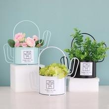 Mini Portable Wrought Iron Plant Cactus Flower Pot Garden Home Office Decor Planter Desktop Pots Container