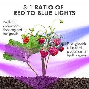 Image 4 - 5 メートル LED フィトランプフルスペクトル LED ストリップライト 300 Led 5050 チップ LED Fitolampy ためのライトの成長温室水耕植物