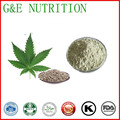 Factory Supply High Quality 50% Hemp protein Hemp Seed Extract  500g