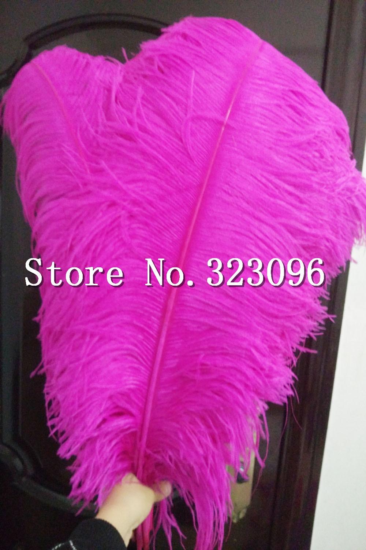 ₪Beautiful! 100pcs high quality Hard Rod 70-75 cm natural ostrich ...