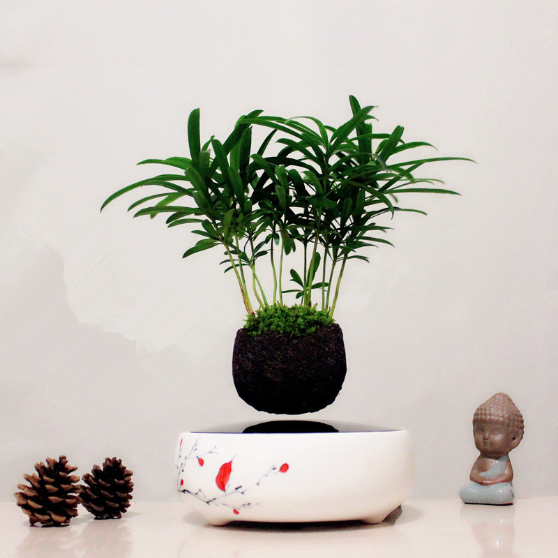 magnetic levitation air bonsai (no plant) Mini Plants