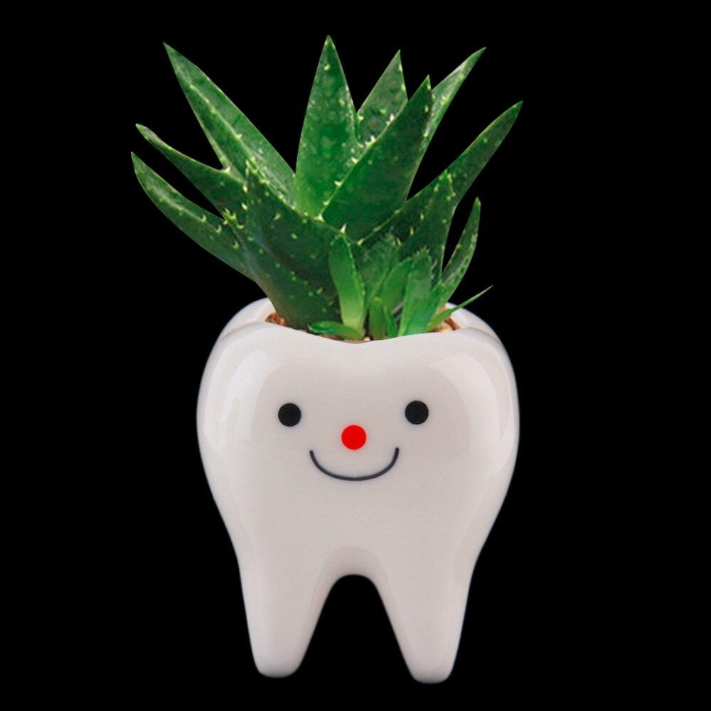 Bimët 2017 Bimët Bimët Bimë të Bardhë Qeramikë Lule DIY Succulent Planter të Dhëmbëve të Vogla 7 * 6 * 6cm