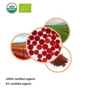 Image 3 - משרד החקלאות EC מוסמך אורגני astaxanthin 5% אורגני haematococcus תמצית astaxanthin