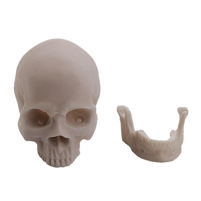 Für verkauf Menschlicher Schädel becken kiefer handwerk und ...