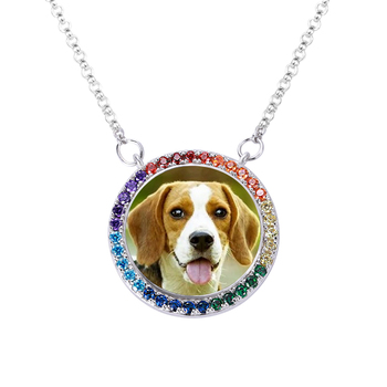 AILIN Pet Photo Necklace Pet Lover Gift Cat Necklace Personalized Silver Pet Name Memorial Rhinestone Necklace Jewelry