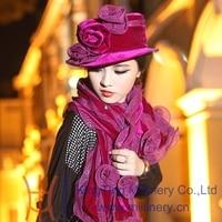 Trasporto libero di vendita calda elegante delle donne di modo breve birm fiore 100% velluto cappello di inverno caldo lungo scialle caldo derby cappello vestito set