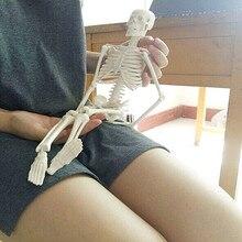 """45 ס""""מ מבנה גוף מיני אנטומי שלד אדם מודל Stand פוסטר רפואי ללמוד סיוע האנטומיה"""