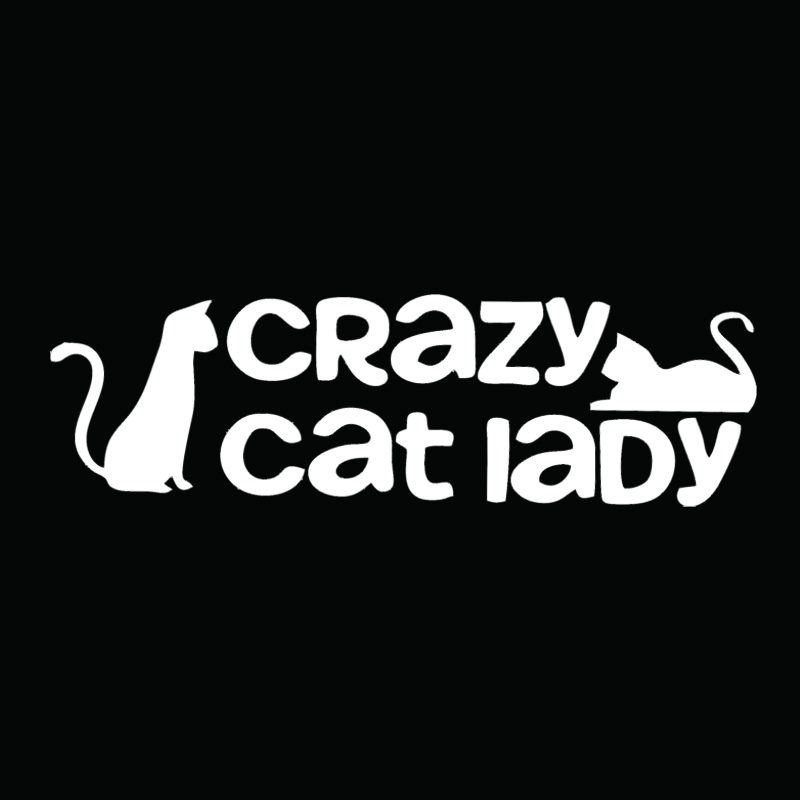 Crazy Cat Lady Car Van window Bodywork Vinyl Sticker Decal