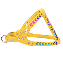 Small Dogs Harness