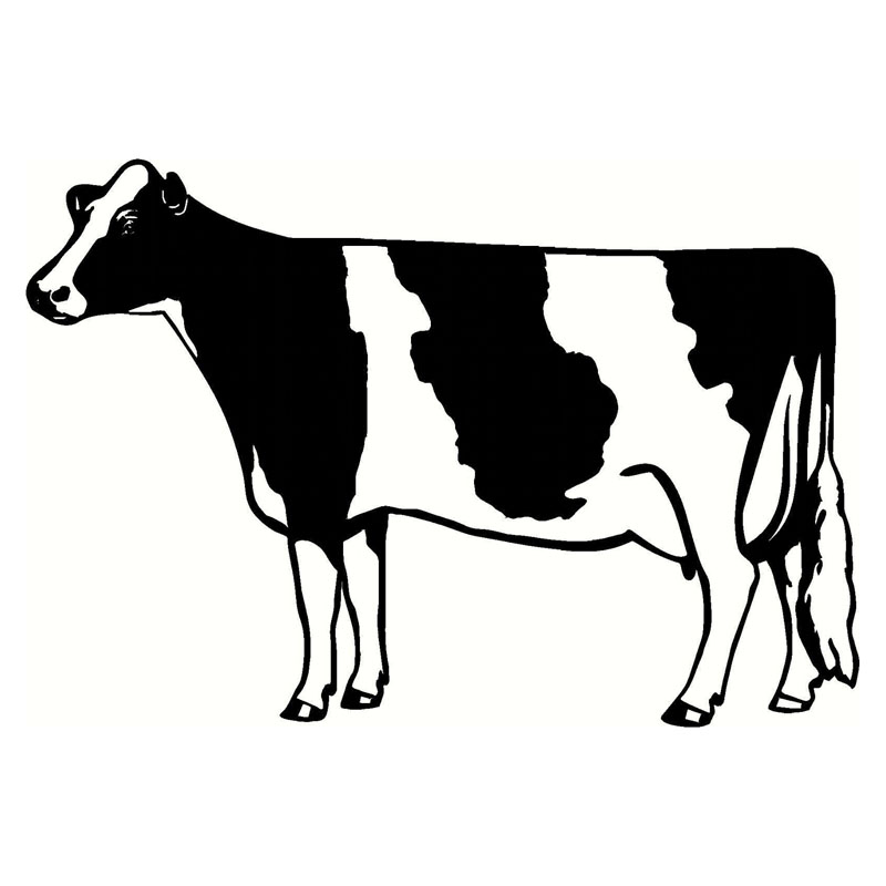 18 12 3cm Amusing Car Styling Milch Cow Vinyl Car Stickers Farm