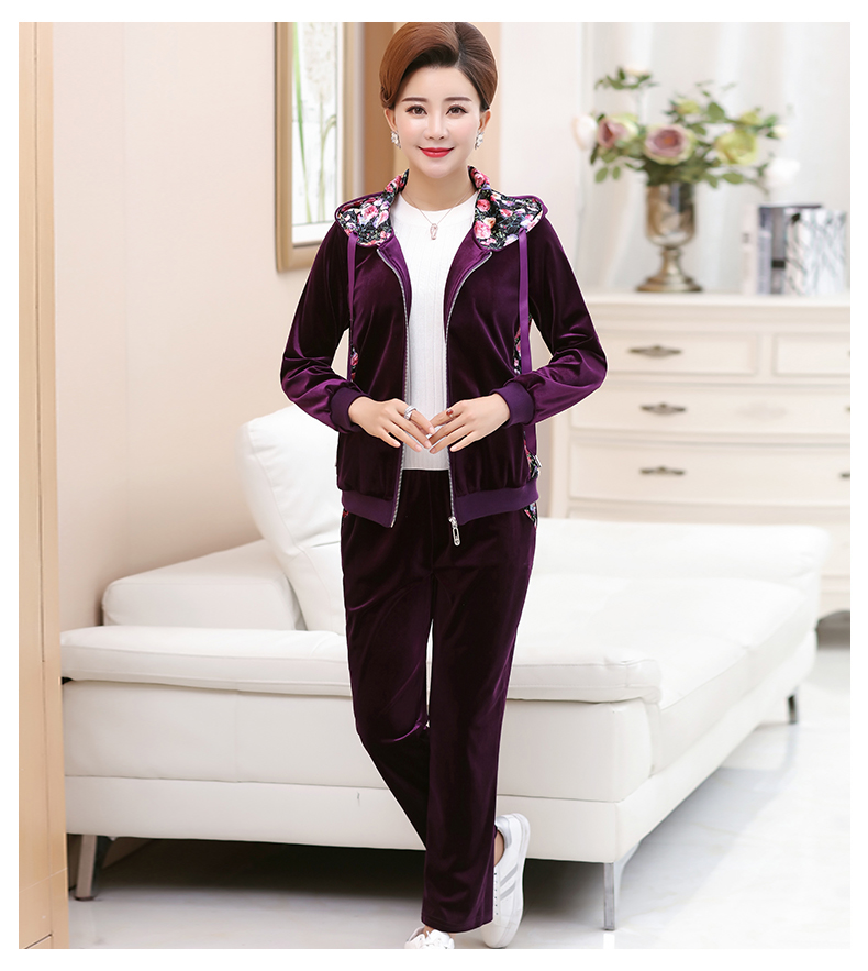 WAEOLSA Woman Casual Tracksuit Women Hooded Jacket And Trouser 2 Pieces Suit Pleuche Set Lady 2PCS Pant Set Velvet Ensemble Femme (16)